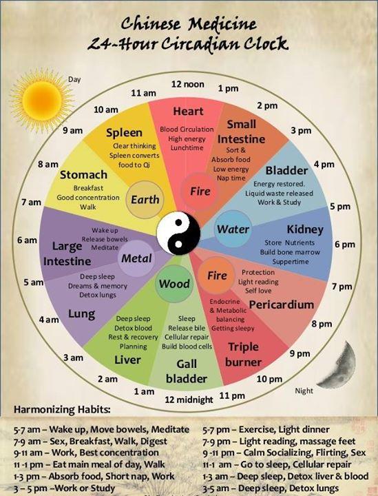 kineziki iatriki yin yang physicaltherapies