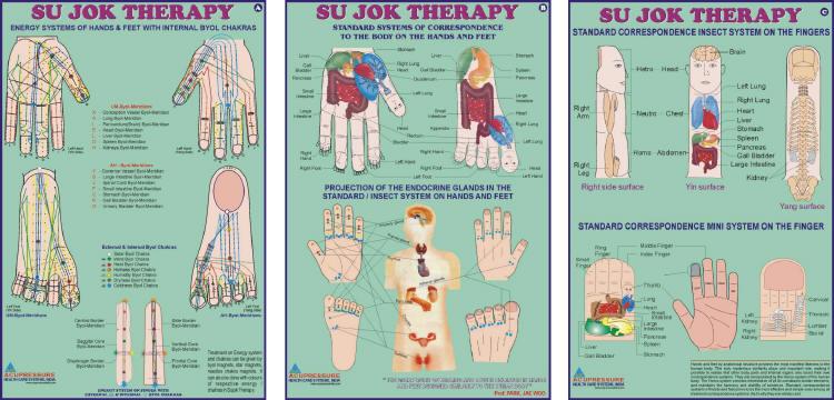 sujok therapey physicaltherapies velonismos
